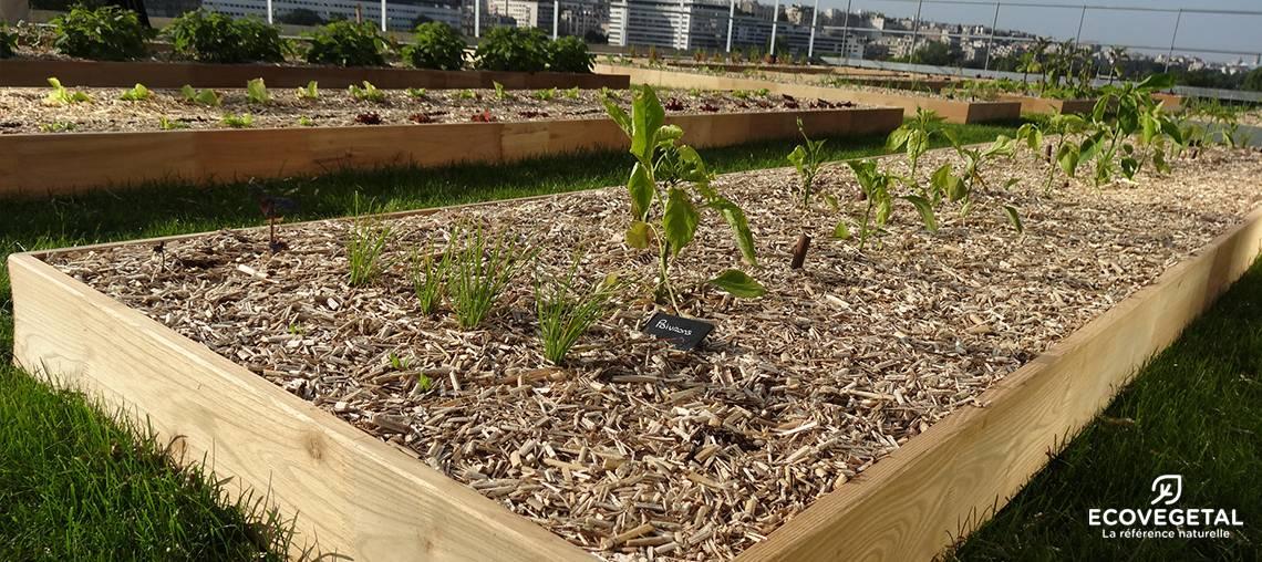ecovegetal faites de votre toit un jardin potager urbain. Black Bedroom Furniture Sets. Home Design Ideas