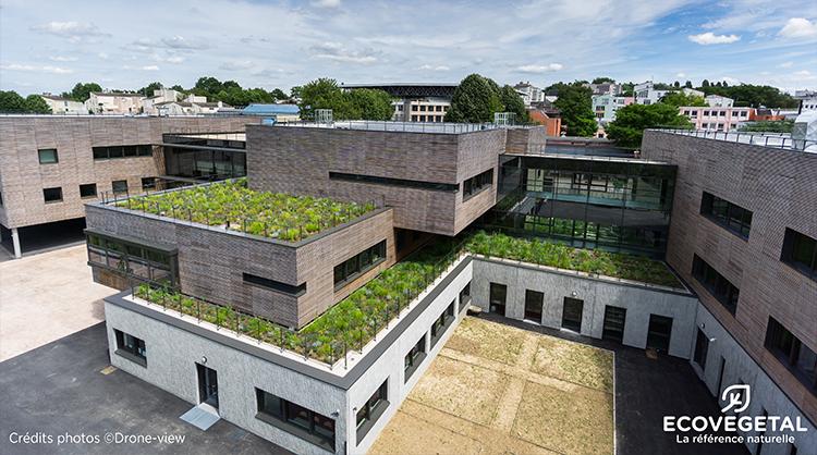 Collège de l'Arche Guedon à TORCY (77). 1000 m² de terrasses plantées avec le système LAVANDULIS.