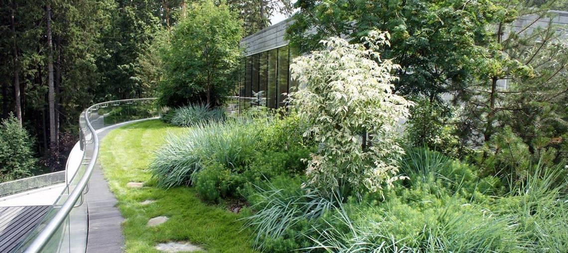 foire aux questions toitures végétales