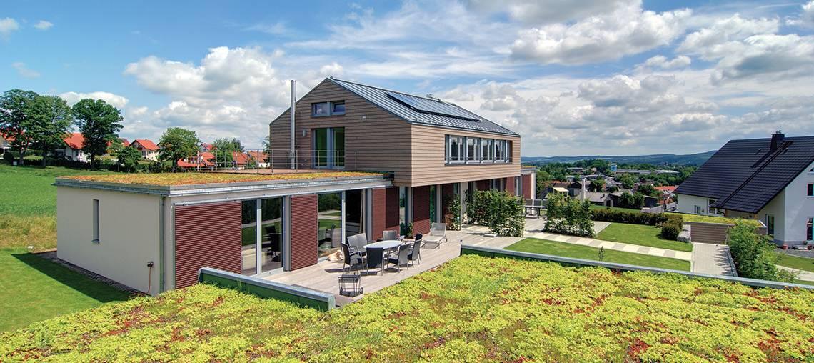 la toiture végétalisée d'une maison grace aux bacs précultivés ecosedum pacl