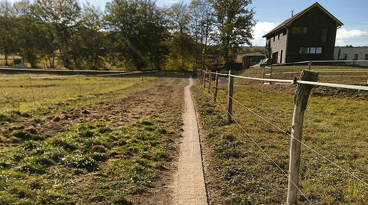 Chemin étroit dans une pâture utilisé uniquement par les chevaux