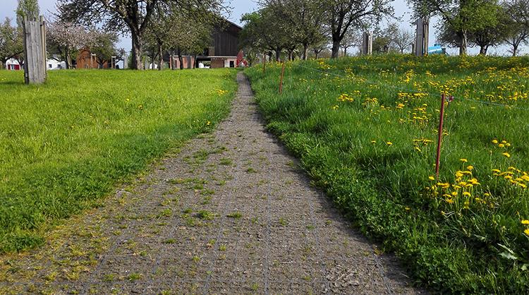 Chemin d'accès à l'écurie rempli en concassé drainant