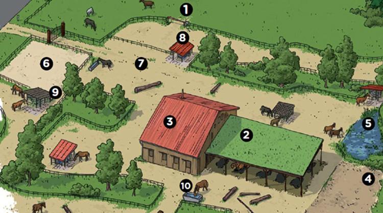 L'écurie active : une réponse à la question combien de terrain pour un cheval ?
