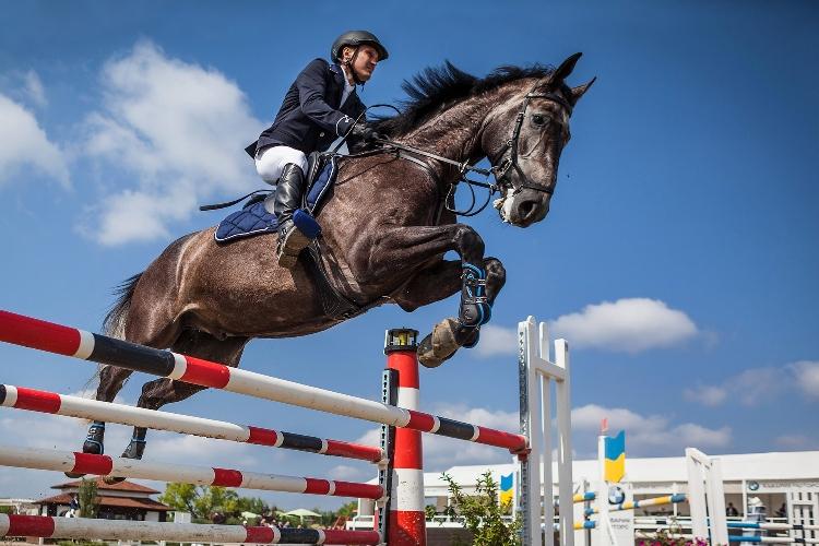 carrière équitation : comment concevoir une carrière équestre