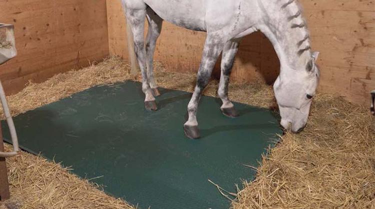 Exemple de produit assurant le confort du cheval au box : tapis EQUIMAT en EVA