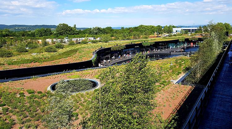 le village des marques toiture végétalisée réussie