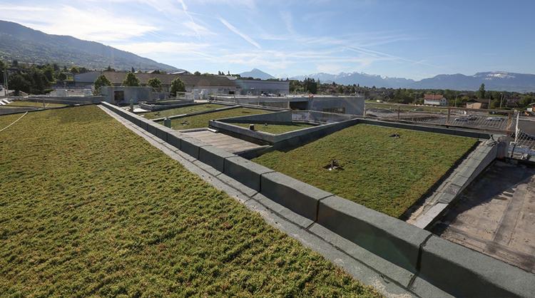 Groupe scolaire à CRANVES-SALES (74). 1300 m² de bacs pré cultivés ECOSEDUM PACK.