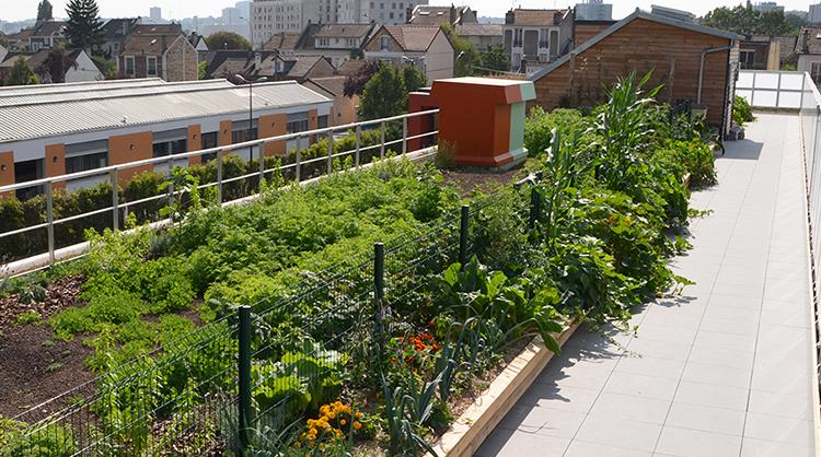 ecovegetal une solution de toiture v g tale pour tous vos projets
