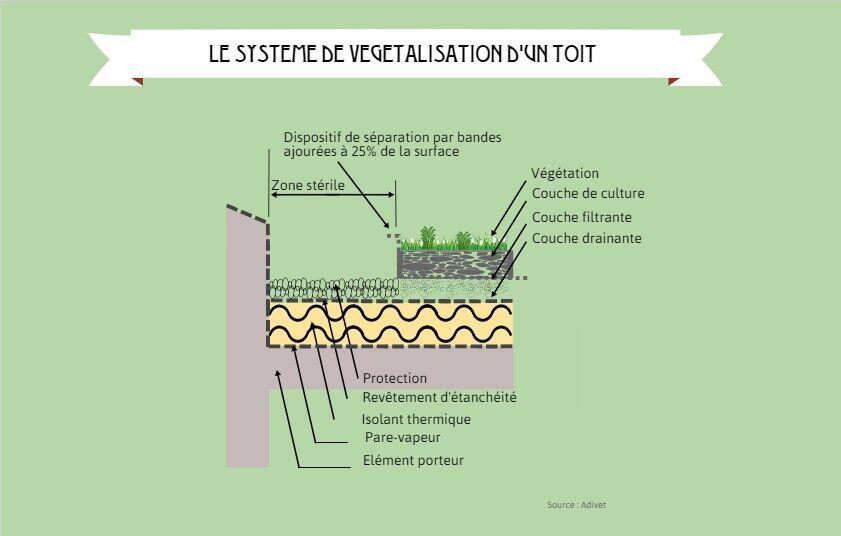 Un système complet pour végétaliser les toits