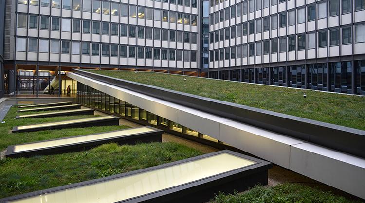 Université de Jussieu à PARIS (75). Installation de tapis SAXATILIS pré cultivés sur des pans de toiture en pente.