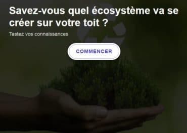 Quel écosystème va-t-il se créer sur votre toit végétalisé ?