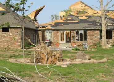 Résistance au vent : et si une toiture végétalisée avait en fait les meilleures performances ?