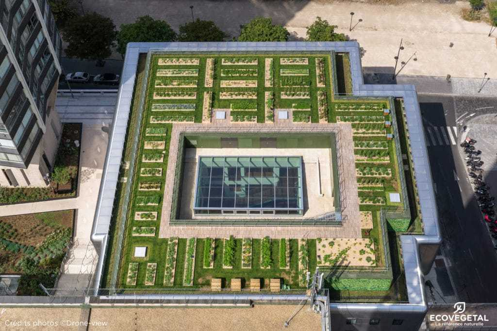 Potager urbain en toiture terrasse végétalisée Le Cordon Bleu Paris