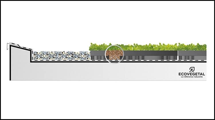 ecosedum_pack_pour_une_vegetalisation_sur_toitures_plates_070916093548-0