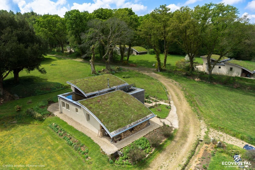 Toiture terrasse végétalisée Succulis Ecovegetal
