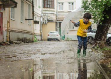 Gestion des eaux pluviales à la parcelle : pourquoi faire ?