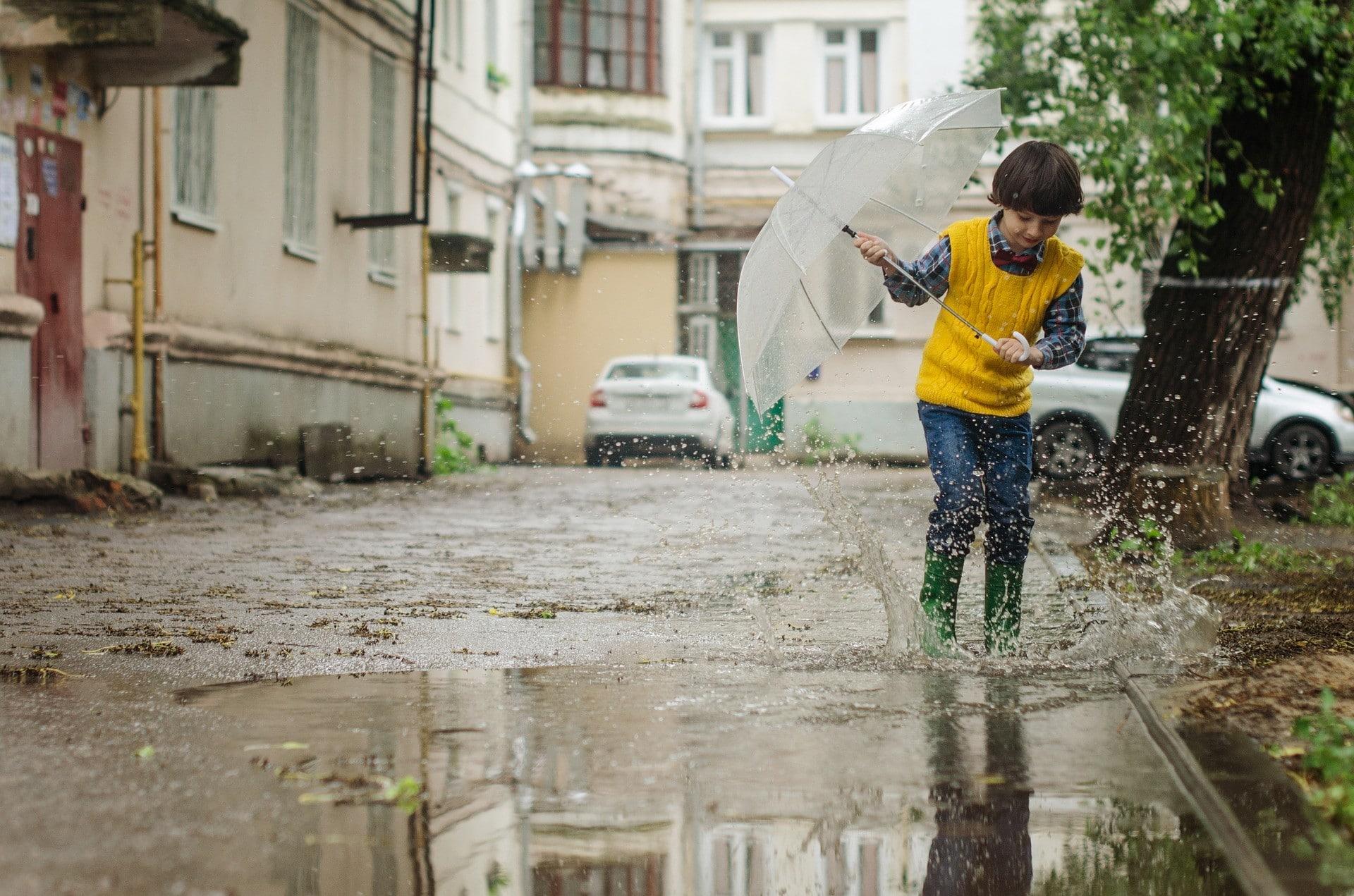 gestion des eaux pluviales à la parcelle : voici pourquoi