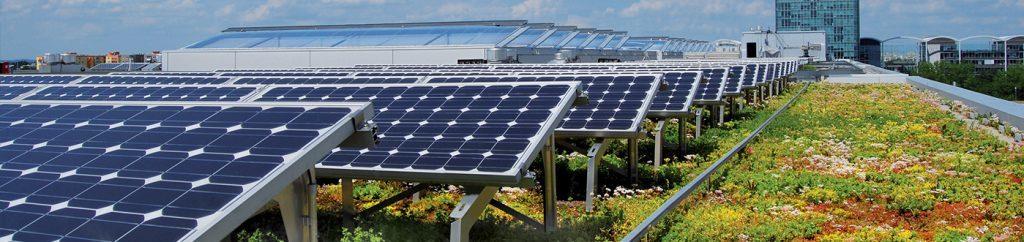 Panneaux photovoltaïques toiture végétale