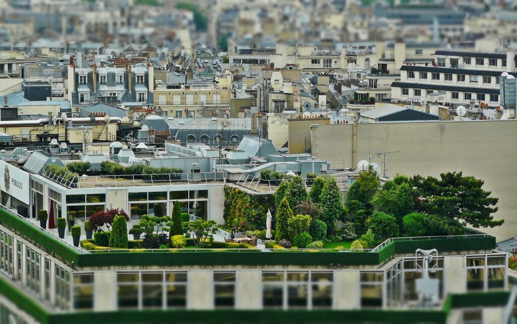 Comment réaliser un toit végétalisé terrasse Paris