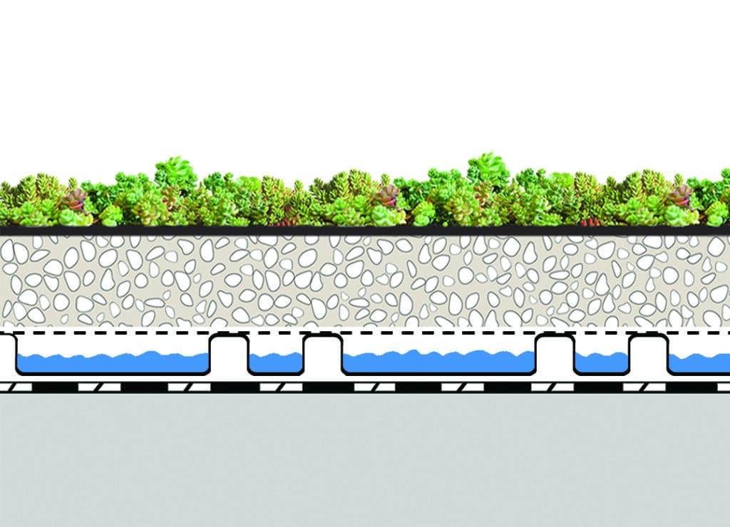 toiture terrasse végétalisée coupe succulis xd20