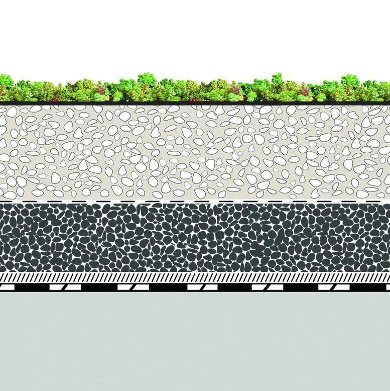toiture terrasse végétalisée coupe succulis meridio système ECOVEGETAL