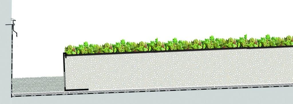 Coupe toiture végétalisée légère pente