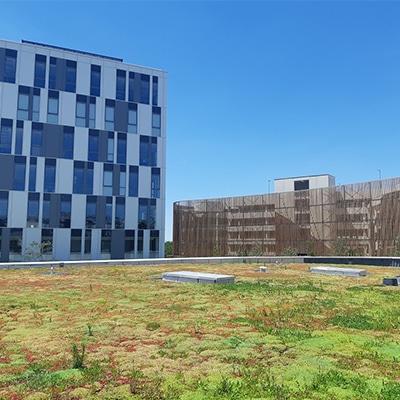 Campus Orange – BALMA