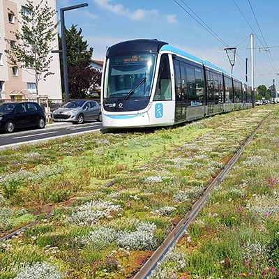 Tramway T9 – ORLY (94)